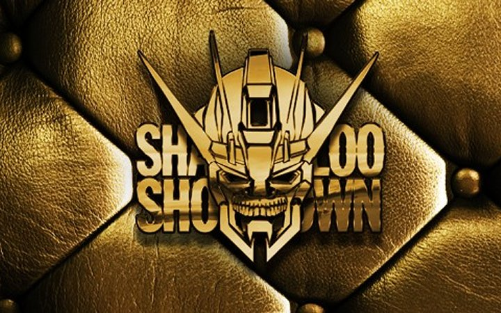 Shadowloo Showdown 2012 (Résultats – 5 et 6 Mai 2012)