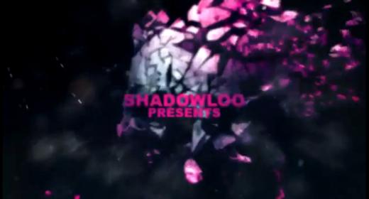 Shadowloo Showdown 2011